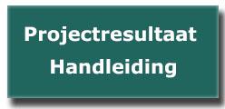 Projectresultaat formuleren handleiding