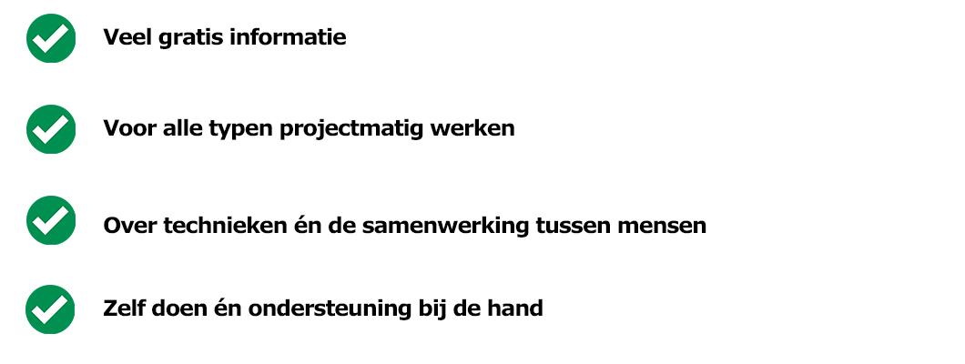werken-aan-projecten-voordelen