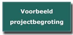 Voorbeeld projectbegroting