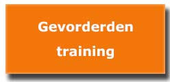 gevorderdentraining projectmanagement