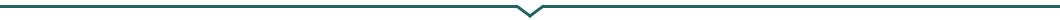 Indelingsstreep-met-punt-WAP-steunkleur-
